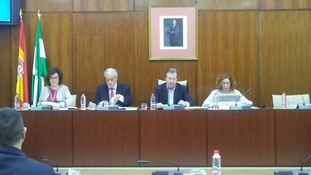 El Defensor lleva al Parlamento su informe sobre muerte digna