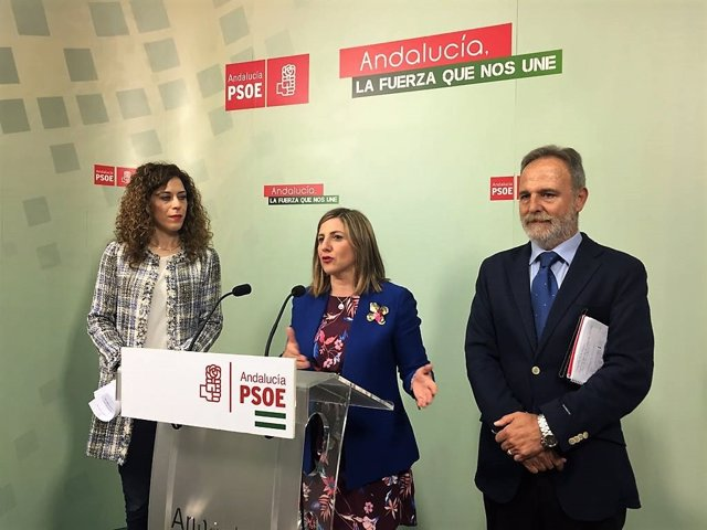 Irene García, secretaria del PSOE de Cádiz, en rueda de prensa