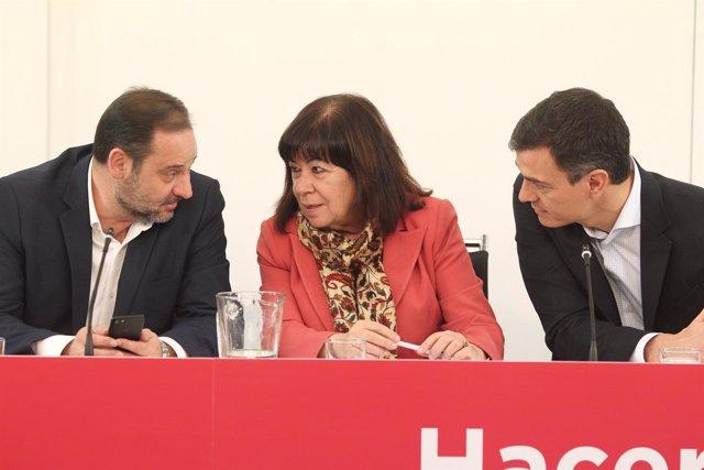 Pedro Sánchez, Cristina Narbona y José Luis Ábalos en la Comisión la Ejecutiva