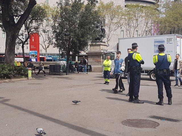 Trabajos de limpieza y salubridad en la acampada de plaza Catalunya