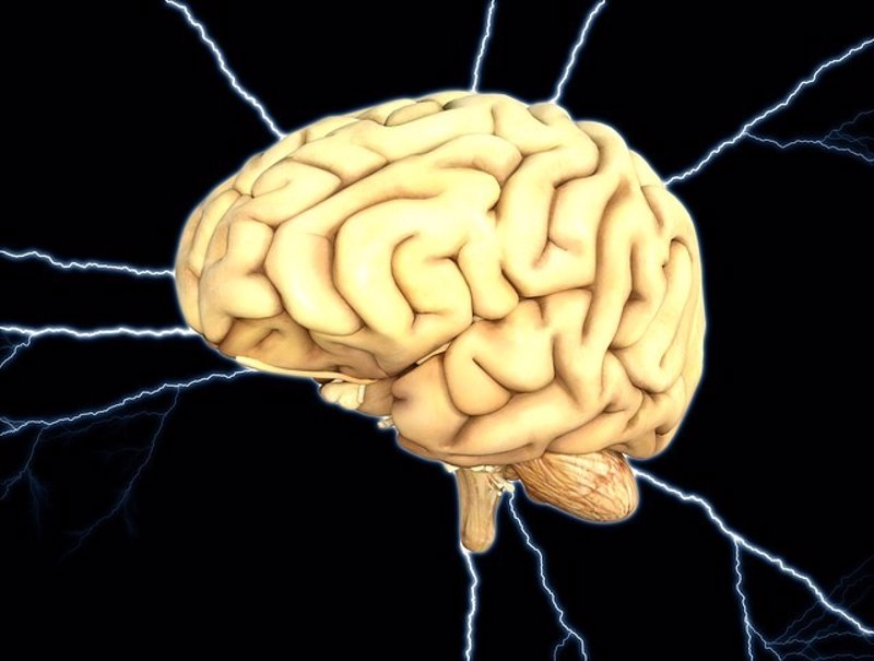 El cerebro cambia su dinámica global horas antes de una crisis epiléptica