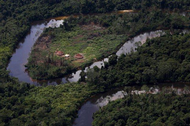 Vista de la Amazonía