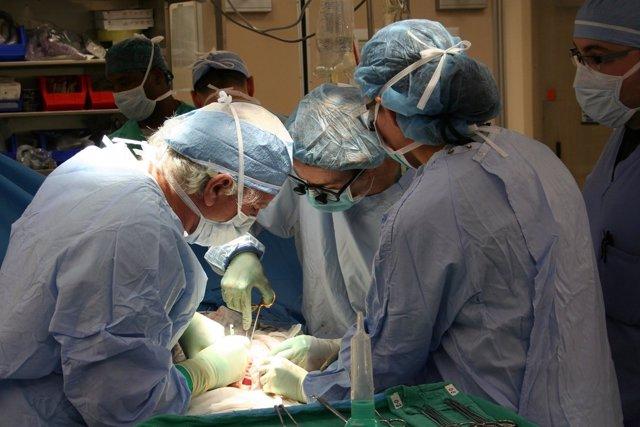 Sanitarios durante una intervención para realizar un transplante
