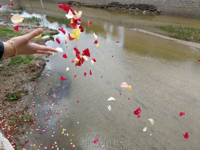 Ritual de flores y velas en el Manzanares por el Día del Pueblo Gitano