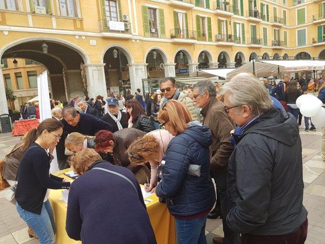 Firmas de Hablamos Español en Palma