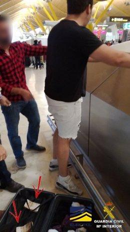 Detenido un hombre en la operacion 'Tulipán Blanca'