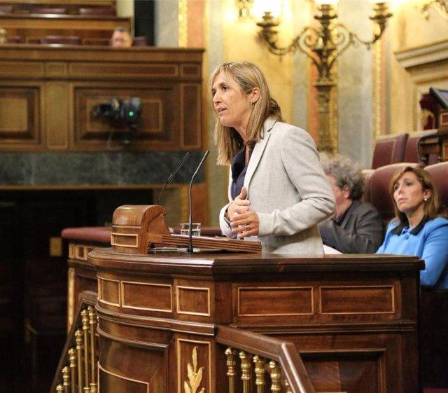 Teresa Palmer, diputada del PP