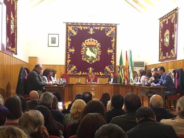Pleno en el Ayuntamiento de Palomares (Sevilla)