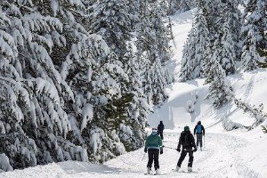 Les estacions d'esquí de FGC reben 714.000 visitants durant la temporada 2017-2018 (FGC)