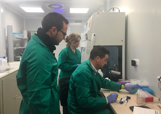 Laboratorio del CSIC en Córdoba donde se investiga la Xylella fastidiosa