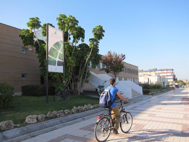 UMA, Universidad, Facultad, Andalucía Tech, universitario
