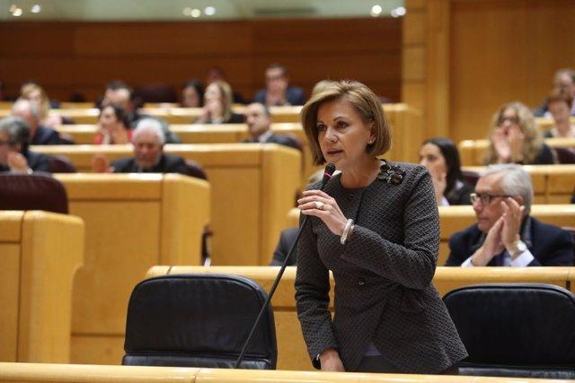 María Dolores de Cospedal en el Senado
