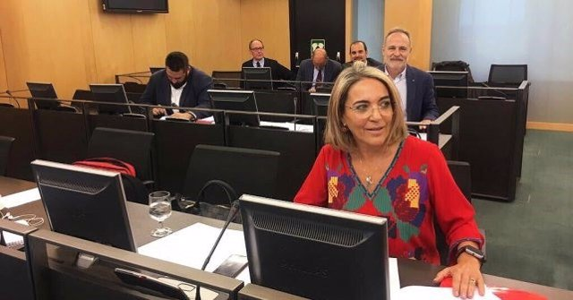 La diputada nacional por el PSOE de Huelva Pepa González Bayo