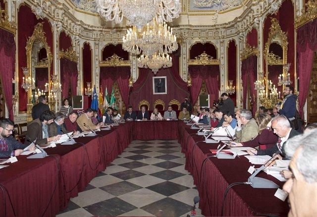 Consejo de Alcaldías en la Diputación de Cádiz