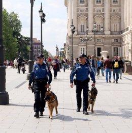 Sección canina de Policía Municipal de Madrid