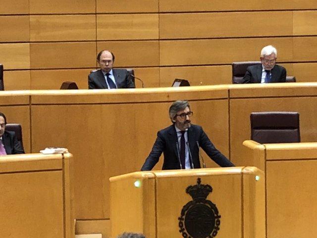Iñaki Oyarzábal defiende la posición del PP ante el Pleno del Senado