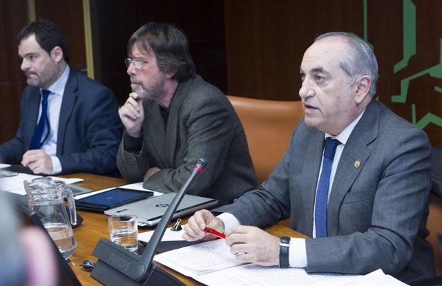 Comparecencia parlamentaria de Iñaki Arriola
