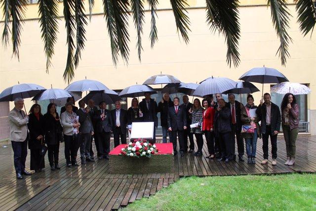 La corporación ha rendido un homenaje floral a estos 14 representantes de la DPZ
