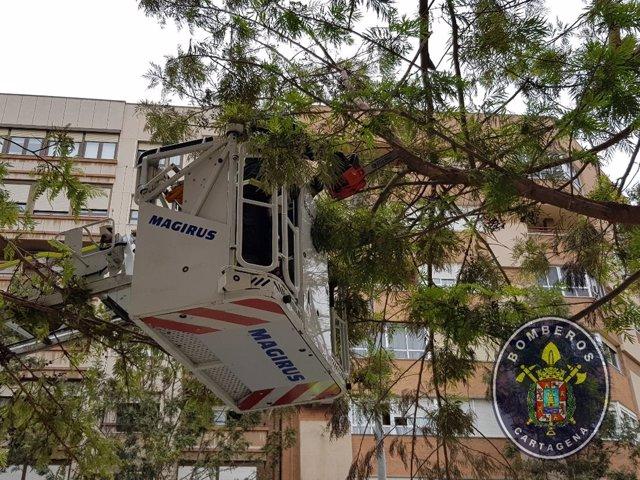Intervenciones de los bomberos por el fuerte viento