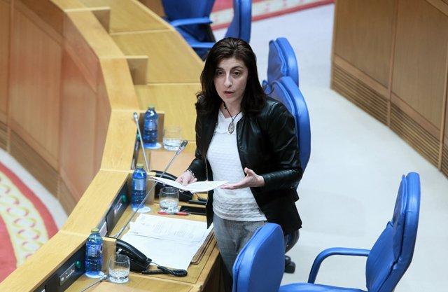 La conselleira de Medio Rural, en el pleno