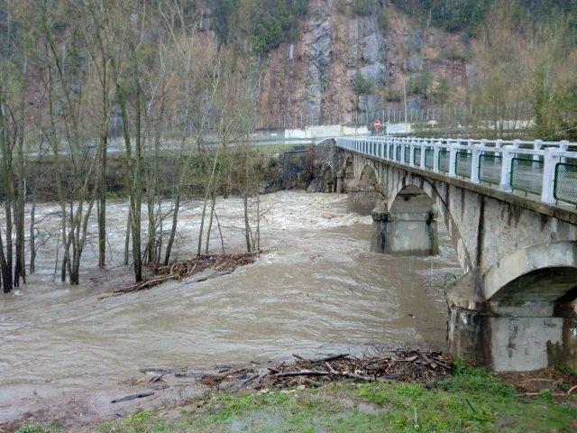 El río Ter a su paso por Ripoll