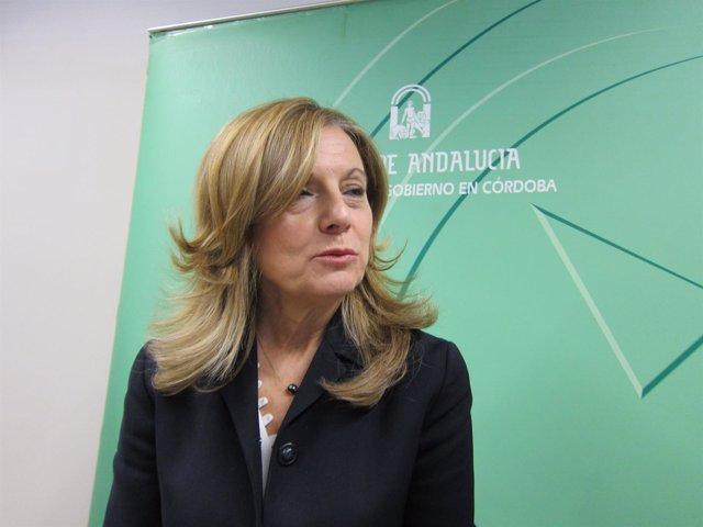 La consejera de Salud, Marina Álvarez