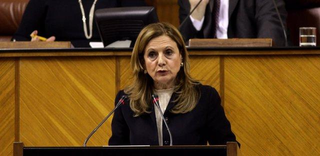 La consejera de Salud, Marina Álvarez, en el Pleno del Parlamento