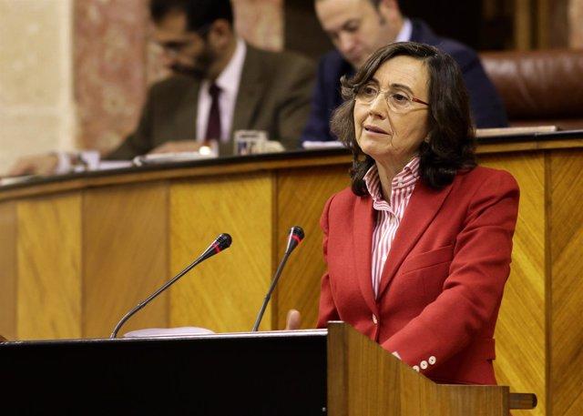 Rosa Aguilar, ante el Pleno del Parlamento
