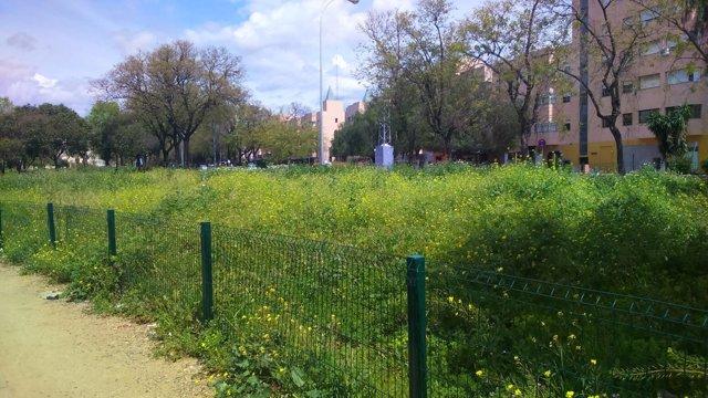 Imagen de los Jardines del Edén de Sevilla Este