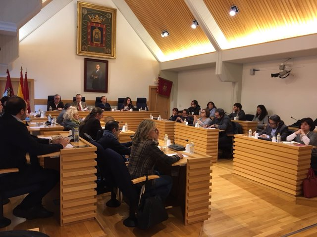 Pleno Ayuntamiento Ciudad Real