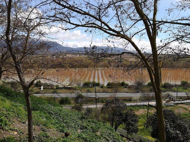Crecida Ebro en Haro