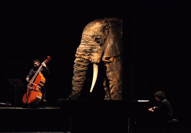 Imagen del espectáculo 'Soñando el carnaval de los animales'