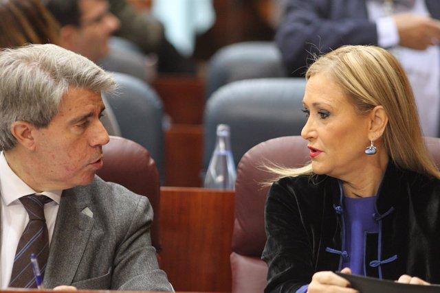 Ángel Garrido y Cristina Cifuentes en la Asamblea de Madrid