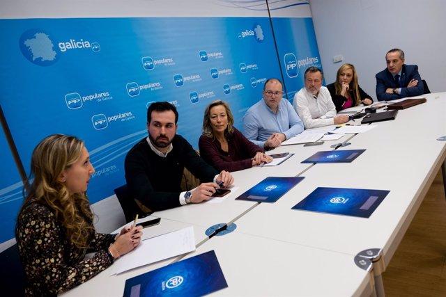 Reunión del comité de cidades del PPdeG