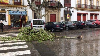 La lluvia y los aludes afectarán hoy a las provincias pirenaicas y a Mallorca