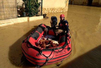La DPZ envía maquinaria a Quinto de Ebro para proteger su casco urbano y rescata animales de varias granjas