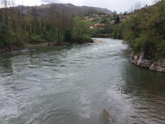 Río Nalón, rios de Asturias, agua