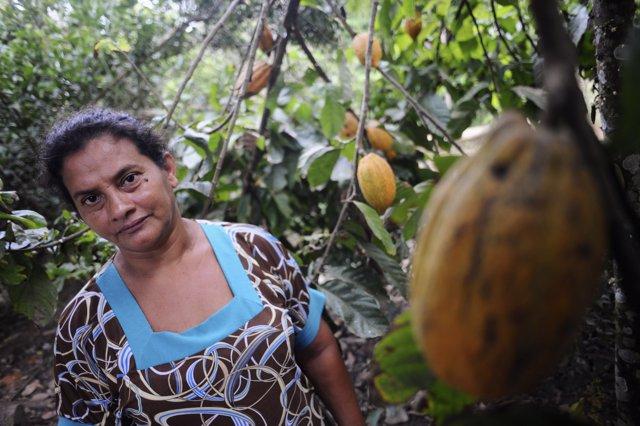 Foto de archivo de una agricultura junto a una plantación de cacao.