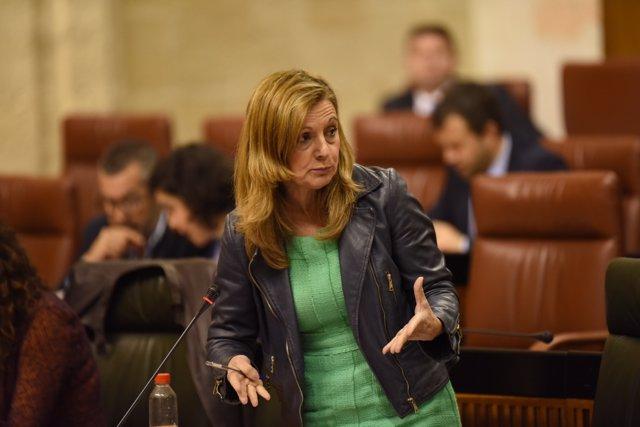 La consejera de Salud, Marina Álvarez, en el Parlamento.