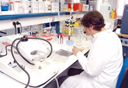Descubren el arma secreta del sistema inmunitario