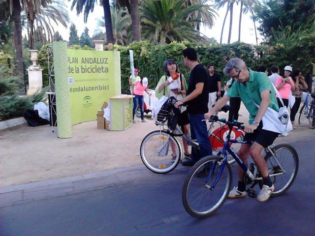 Ciclistas por Sevilla