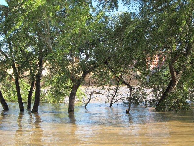Crecida extraordinaria del río Ebro en abril de 2018
