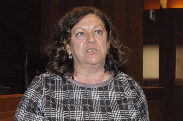 La directora general de Justicia e Interior del Gobierno, María Ángeles Júlvez.