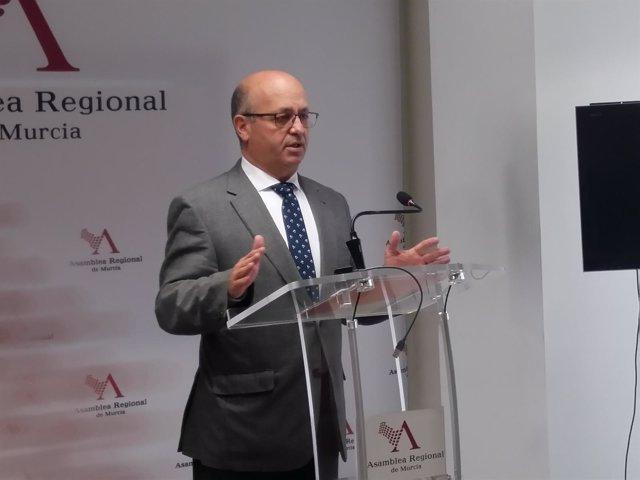 El diputado de Ciudadanos,  Luis Fernández, en Asamblea