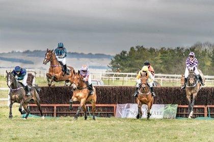 Qué elementos se deben tener en cuenta para apostar en carreras de caballos