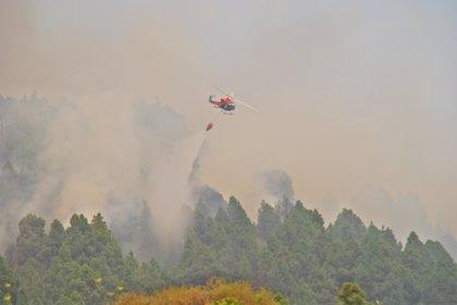 Los Cabildos piden más medios aéreos contra incendios fuera de la campaña de verano