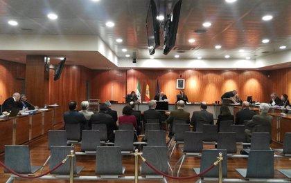 Inicio del juicio por el caso Hidalgo de blanqueo de capitales en Marbella tras el aplazamiento de la semana pasada