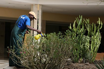 Los afiliados extranjeros a la Seguridad Social en la Región de Murcia suben un 2,42% en marzo