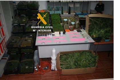 Tres detenidos tras desmantelar dos invernaderos de marihuana en viviendas de Mijas
