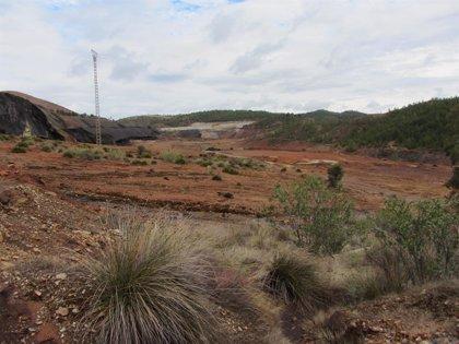 Un estudio indica que exposición a metales en entornos mineros aumenta el riesgo de padecer cálculos biliares